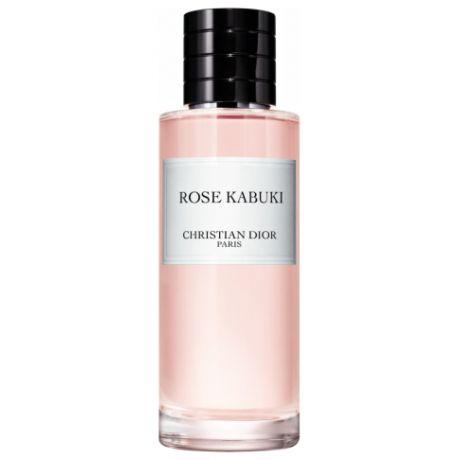 Christian Dior Rose Kabuki